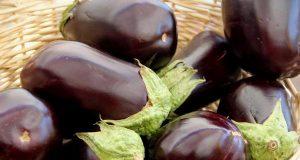 насіння баклажанів - як вибрати