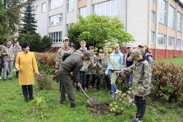 Зелена країна: майже 200 тис дерев висадили на Львівщині у межах екологічної ініціативи Президента України